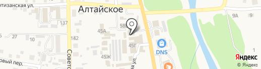 Твоя клиника на карте Алтайского