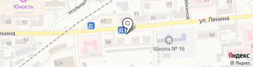Камелия на карте Гурьевска