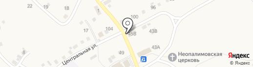 Магазин разливных напитков на карте Пригородного