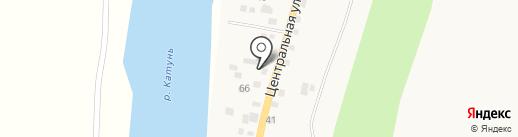 Викинг на Катуни на карте Элекмонара