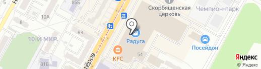 Podarilli на карте Кемерово