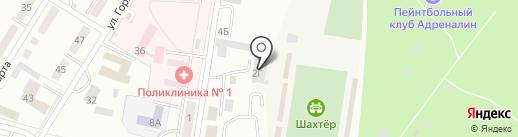 33 пингвина на карте Ленинска-Кузнецкого