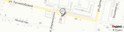 Блюз на карте Ленинска-Кузнецкого