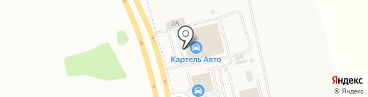 Картель Авто на карте Металлплощадки