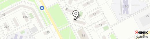 Айболит на карте Кемерово