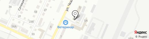 Первая клининговая компания на карте Белово