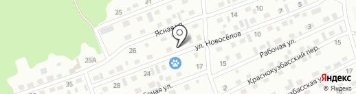 Киселёвская станция по борьбе с болезнями животных, ГБУ на карте Киселёвска