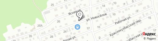 Киселёвская станция по борьбе с болезнями животных на карте Киселёвска