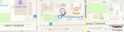 Зебра на карте Прокопьевска