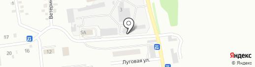Снабженец на карте Киселёвска
