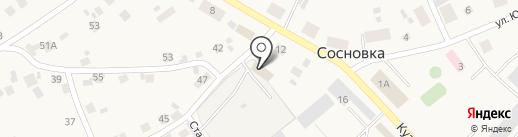 ИНСИБЛЕС на карте Сосновки