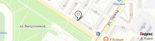 Золотой шмель на карте Новокузнецка