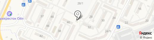 Фрутомир на карте Осинников