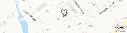 Кедр Абакан на карте Чапаево