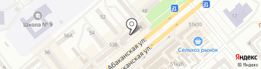 DNS на карте Минусинска