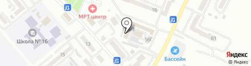 Хвостатый модник на карте Минусинска