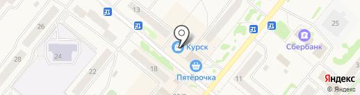 Магазин зоотоваров на карте Сосновоборска