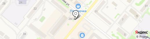 Флора на карте Сосновоборска