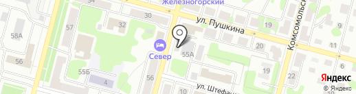 Викинг на карте Железногорска