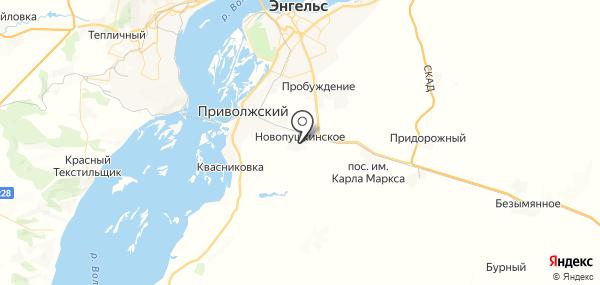Новопушкинское на карте