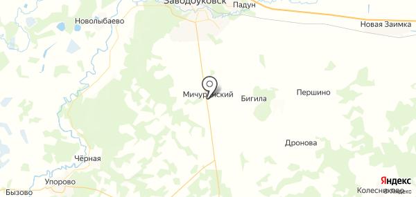 Мичуринский на карте