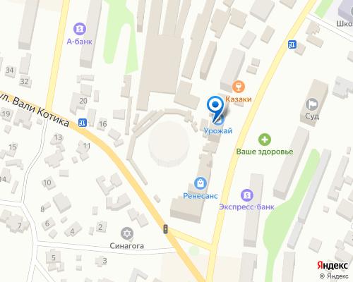 Расположение магазина NSP в Шепетовке на Яндекс карте