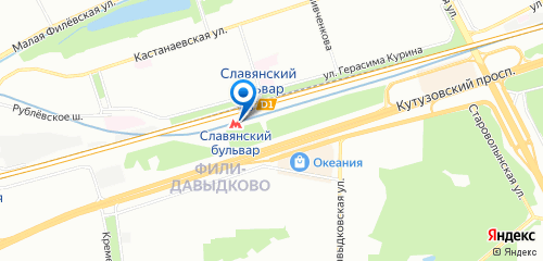 Ветеринар на дом Славянский бульвар