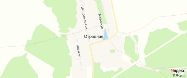 Карта Отрадной деревни в Иркутской области с улицами и номерами домов
