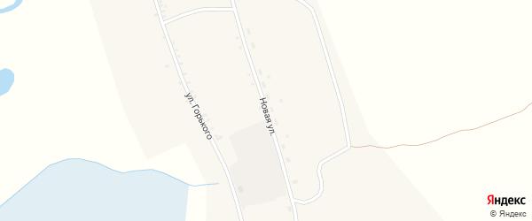 Новая улица на карте села Тунки с номерами домов