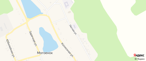 Лесная улица на карте села Могоенок Иркутской области с номерами домов
