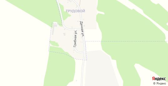 Дачная улица в Черемхово с номерами домов на карте. Спутник и схема онлайн