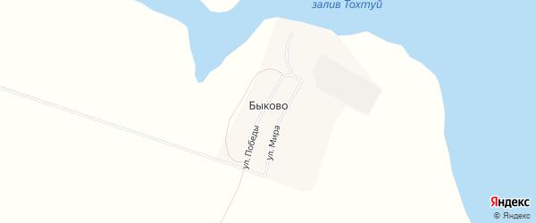 Карта поселка Быково в Иркутской области с улицами и номерами домов