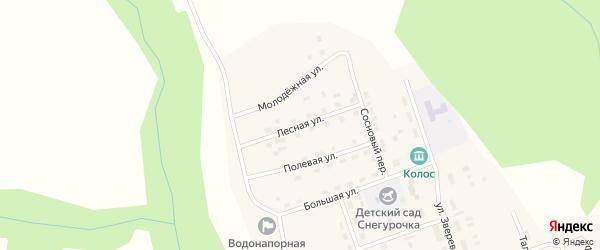 Лесная улица на карте поселка Новоилимска Иркутской области с номерами домов