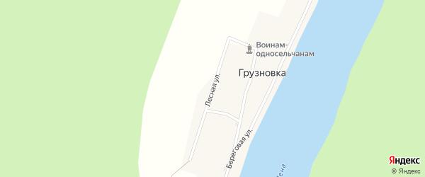 Лесная улица на карте деревни Грузновка Иркутской области с номерами домов
