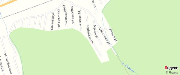 Березовая улица на карте садового некоммерческого товарищества Цементника Бурятии с номерами домов