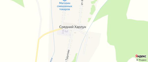 Улица Тудупова на карте улуса Среднего Харлун с номерами домов