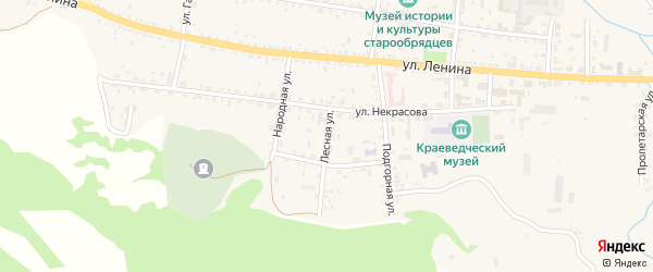 Лесная улица на карте села Тарбагатая Бурятии с номерами домов