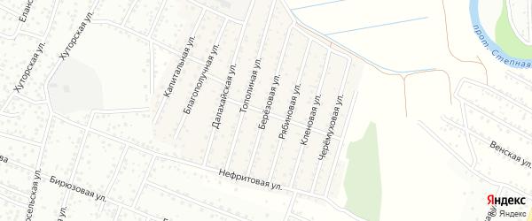 Березовая улица на карте села Поселье с номерами домов