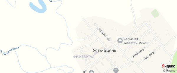 Переулок Свободы на карте села Усть-Брянь с номерами домов
