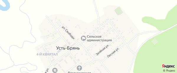 Улица 40 лет Победы на карте села Усть-Брянь с номерами домов