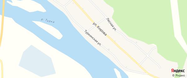 Туркинская улица на карте села Турки с номерами домов