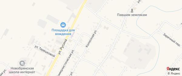 Колхозная улица на карте села Новой Бряни с номерами домов