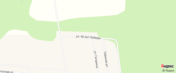 Улица 40 лет Победы на карте села Верхней Заимки с номерами домов
