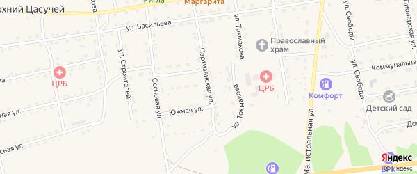 Партизанская улица на карте села Нижнего Цасучея Забайкальского края с номерами домов