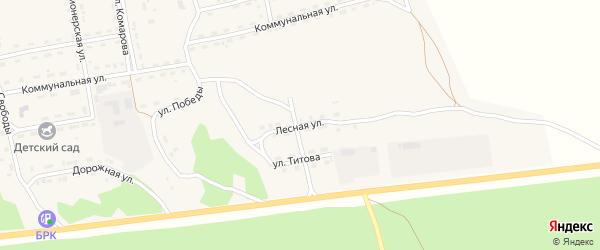 Лесная улица на карте села Нижнего Цасучея Забайкальского края с номерами домов