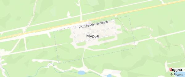 Карта села Мурьи в Якутии с улицами и номерами домов