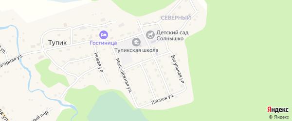 Школьная улица на карте села Тупика Забайкальского края с номерами домов