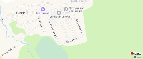Строительная улица на карте села Тупика Забайкальского края с номерами домов