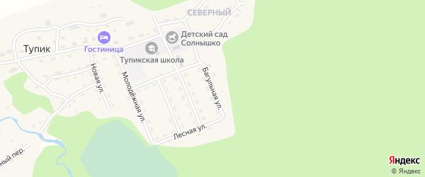 Багульная улица на карте села Тупика Забайкальского края с номерами домов