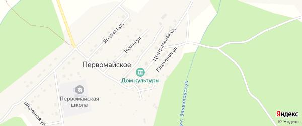 Центральная улица на карте Первомайского села Амурской области с номерами домов